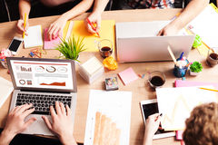 Skillful young freelancers are cooperating in office Royalty Free Stock Images