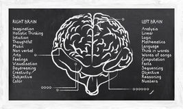 Skills for Right and Left Hemisphere. On Blackboard Royalty Free Stock Photo