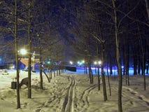 Skimarks在公园,多雪的天气 图库摄影