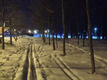 Skimarks in the night park. Royalty Free Stock Photos
