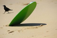Skimboard Royalty Free Stock Photography