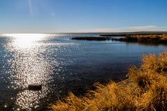 Skimra vatten, sjöMcGregor provinsiell rekreationsområde, Alberta, Kanada royaltyfri bild