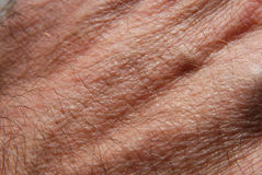 Skin 18. Human skin in close up Royalty Free Stock Photography