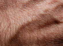 Skin 22. Human skin in close up Stock Photo