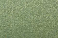 Skin artificial pistachio color Stock Image