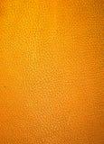 Skin background Stock Image