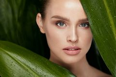 Skin Care. Beautiful Woman With Natural Makeup. And Healthy Facial Skin Holding Green Leaves. High Resolution royalty free stock photography