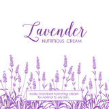 Skin care design. Beauty lavander skin care design. Lavender Oil text with white background. Regenerate cream and Vitamin Background of Concept Skin Care Stock Photos