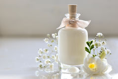Skin care lotion Stock Images