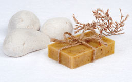 Skin care with natural soap Royalty Free Stock Photography