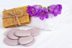 Skin care still life with natural soap Royalty Free Stock Images