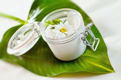 Skin cream and beauty flower Royalty Free Stock Image
