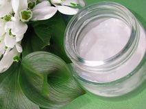 Skin cream and white spring flowers Royalty Free Stock Photography
