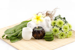 Skin with culantro (Eryngium foetidum L.), aloe vera, and boiled water Stock Photos