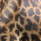 Skin of giraffe Royalty Free Stock Photography