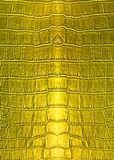 Skin golden leather texture Stock Photo