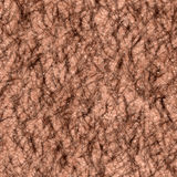Skin hairy Royalty Free Stock Images