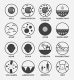 Skin icon set / cell acne free radical oxidative stress humectant emollient scar sunburn phlebotomy collagen aging skin gro royalty free stock images