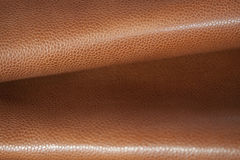 Skin and leather Stock Images