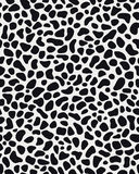 Skin of leopard Stock Photo