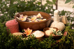 Skin Spa with Thanaka, spa treatments on natural background. stock image