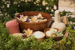 Skin Spa with Thanaka and soap on natural background. stock image