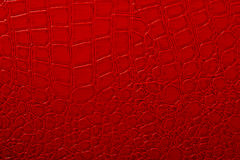 Skin texture. Red background, love Royalty Free Stock Photography