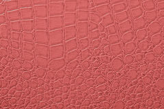 Skin texture. Pink skin texture as background Royalty Free Stock Image