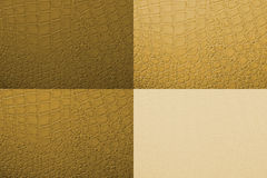 Skin texture Royalty Free Stock Photos