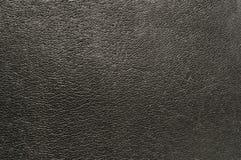 Free Skin Texture Royalty Free Stock Photo - 40338565
