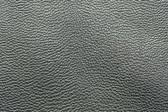The skin texture Royalty Free Stock Photo