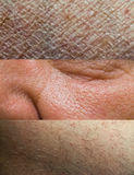 Skin Texture Collection royalty free stock photography