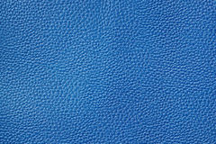 Skin Texture. Fragment. Textured leather background. Template for design Royalty Free Stock Photo