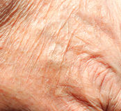 Skin texture, old skin. Closeup of skin texture and wrinkles of an old persons hand Stock Image