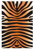 Skin of a tiger. The stylized illustration in the form of a fragment of a skin of a tiger. It can be used as a background Royalty Free Stock Images