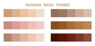 Skin tone color infographic Stock Photo
