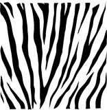 Skin zebra VECTOR Stock Photos