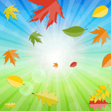 Skinande Autumn Natural Leaves Background vektor Royaltyfria Foton
