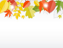 Skinande Autumn Natural Leaves Background vektor Arkivbild