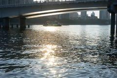 Skinande flod Royaltyfri Bild
