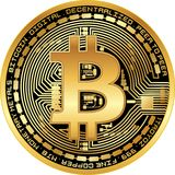 Skinande guld- bitcoin Royaltyfri Foto