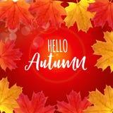 Skinande Hello Autumn Natural Leaves Background också vektor för coreldrawillustration Vektor Illustrationer
