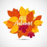 Skinande Hello Autumn Natural Leaves Background också vektor för coreldrawillustration Stock Illustrationer