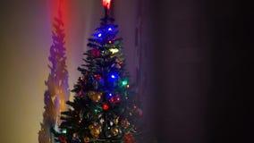 Skinande julträd i aftonen arkivfilmer