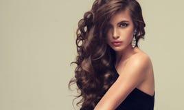 Skinande och fritt att lägga krullning av väl ansat hår Skönhetstående av ungt som ser perfektly kvinnan arkivbilder