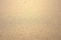 Skinande sandtextur Arkivfoton