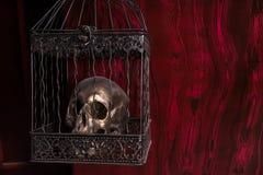 Skinande skalle i utsmyckad bur mot röd bakgrund Fotografering för Bildbyråer