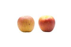 skincare和老化成长润湿的奶油,苹果f的概念 图库摄影