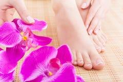 Skincare Stock Image