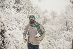 Skincare and beard care in winter. Temperature, freezing, cold snap, snowfall. Bearded man with skates in snowy forest. Man in thermal jacket, beard warm in royalty free stock photography